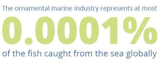 Marine Industry Stat